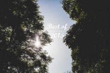 Mes meilleurs moments 2015