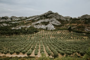 Getaway to Provence